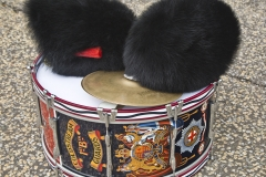 Drum and bearskins